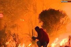 Tài xế lao vào đám cháy dữ dội để cứu chú thỏ