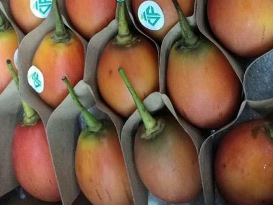 Trái cây đắt như vàng: Dân giàu dính quả hớ nặng 2017