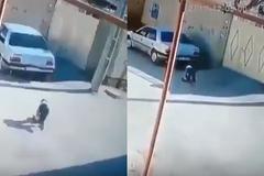 Ông bố bất cẩn lùi ô tô chèn lên con nhỏ 2 lần