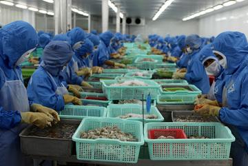 Trung Quốc tắc, EU khó... sức mạnh tỷ USD Việt Nam lao dốc