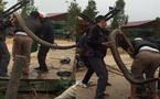 Bắt được rắn hổ mang chúa khổng lồ to như trăn