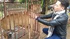 Hi hữu: Xin mang chó đi giám định để vạch mặt kẻ trộm chó