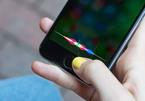Apple sắp trang bị cho Siri tính năng nghe, đáp tiếng thì thầm?