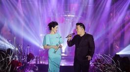 Cát-xê hát đám cưới ngất ngưởng của Mr. Đàm, Phi Nhung, Quang Lê