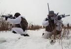 Lính thủy đánh bộ Mỹ, Hàn tập trận giữa tuyết trắng