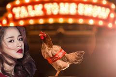 Bị chê hát như gáy, Chi Pu gây sốc mang cả gà vào MV mới nhất