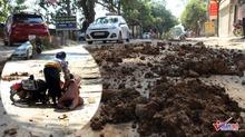 Xe máy lạc lái 'làm xiếc' trên phố Hà Nội vung vãi đất, đá