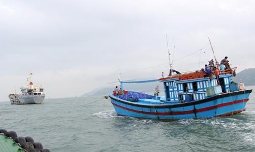 Cứu nạn tàu hết nhiên liệu trong gió giật cấp 11