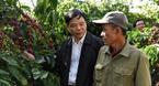 'Bệ đỡ' nâng chất hạt cà phê Việt