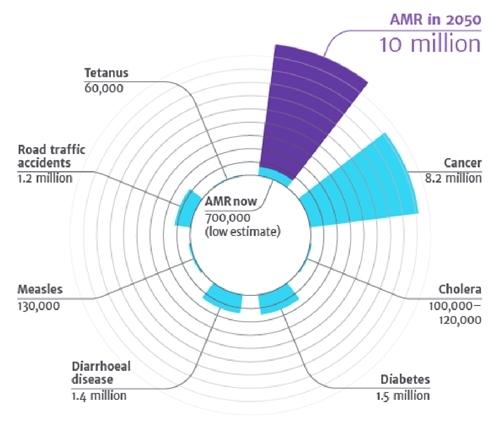 Chuyên gia bệnh hô hấp bàn về kháng sinh hợp lý