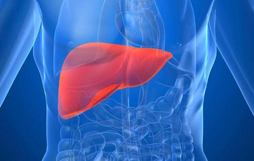 Yếu tố và triệu chứng của Ung thư Gan