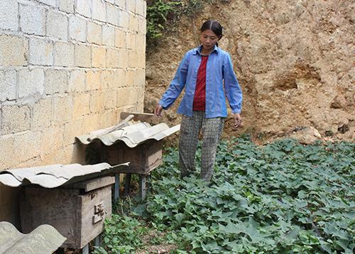 Hiệu quả từ chương trình giúp đỡ người nghèo theo địa chỉ tại Lạng Sơn
