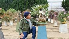 'Cụ' thiên tuế hơn 500 tuổi, có nụ hơn 1 năm vẫn chưa chịu nở hoa