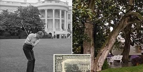 Chặt cây 200 tuổi ở Nhà Trắng