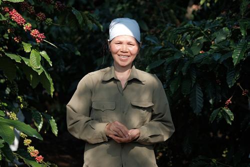 Có NESCAFÉ Plan, nông dân nâng chất cà phê Việt