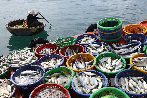 kinh tế biển