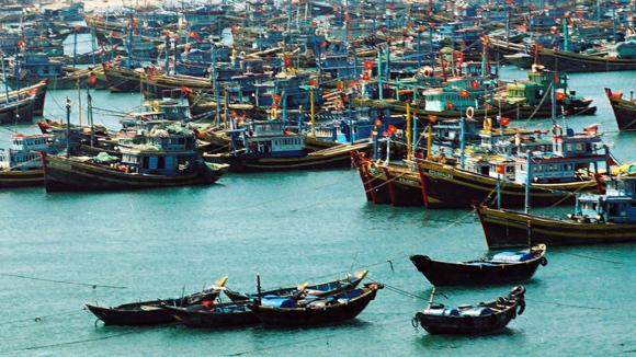 ngư dân,hợp tác Việt - Trung