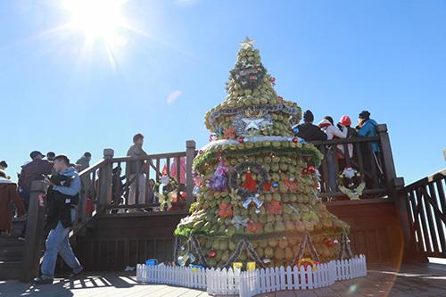Đẹp ngây ngất thiên đường tuyết rơi tại Sun World Fansipan Legend