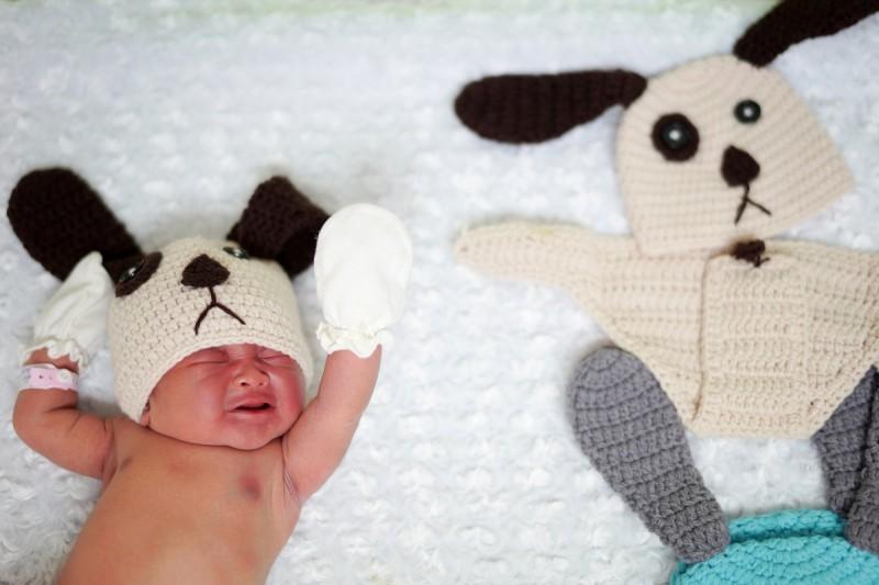 Ngộ nghĩnh bé sơ sinh hóa trang 'cún cưng' đón năm mới