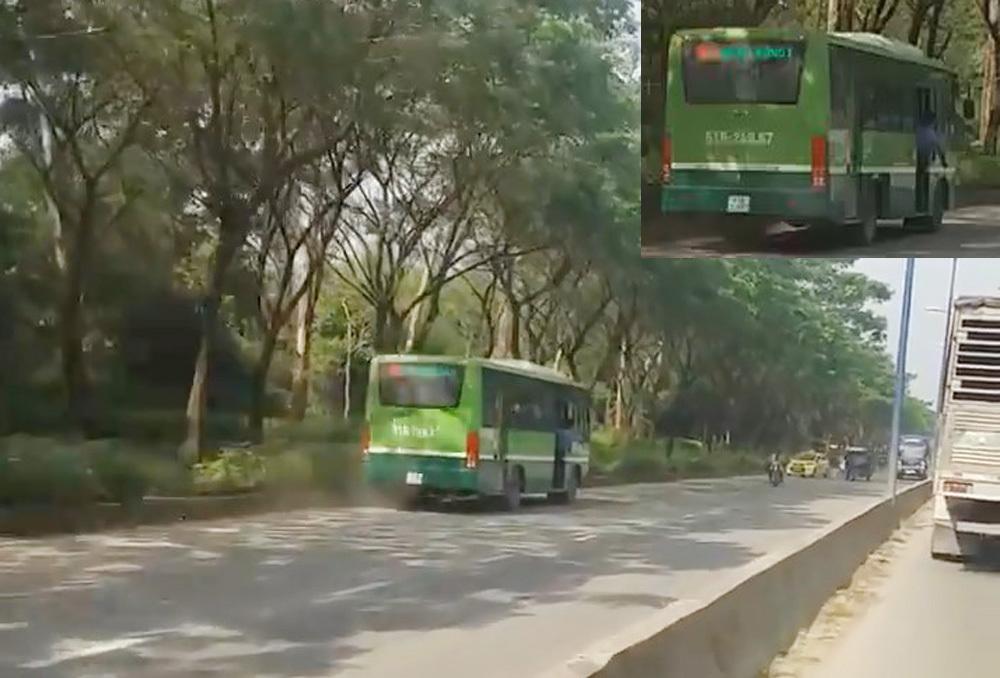đình chỉ,xe buýt,tai nạn xe buýt,xe buýt truy đuổi container trên phố Sài Gòn