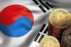 Chính phủ Hàn Quốc thu thuế, thắt chặt quản lý Bitcoin