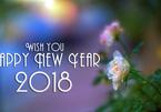 Lời chúc năm mới 2018 bằng tiếng Anh hay và ý nghĩa