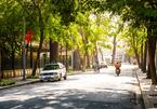 Dự báo thời tiết 1/1: Hà Nội, Sài Gòn rải nắng vàng