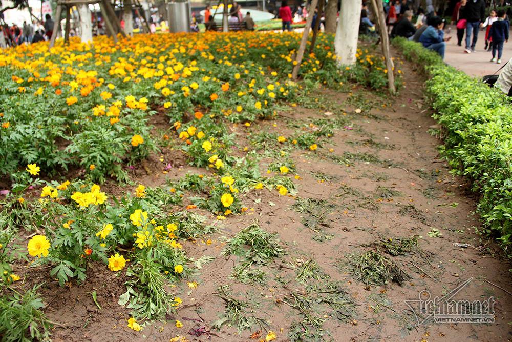 Giao thừa,giao thua,đêm giao thừa,phố đi bộ,Hà Nội,năm mới,năm 2018,Tết dương lịch,vườn hoa,Hồ Gươm