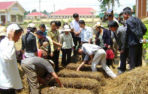 2018, dạy nghề 207.175 lao động nông thôn