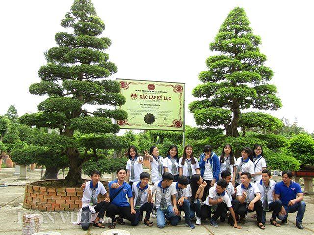 Hai cây me cổ nhất Việt Nam, 150 tuổi giá 6 tỷ, chủ vẫn chưa bán
