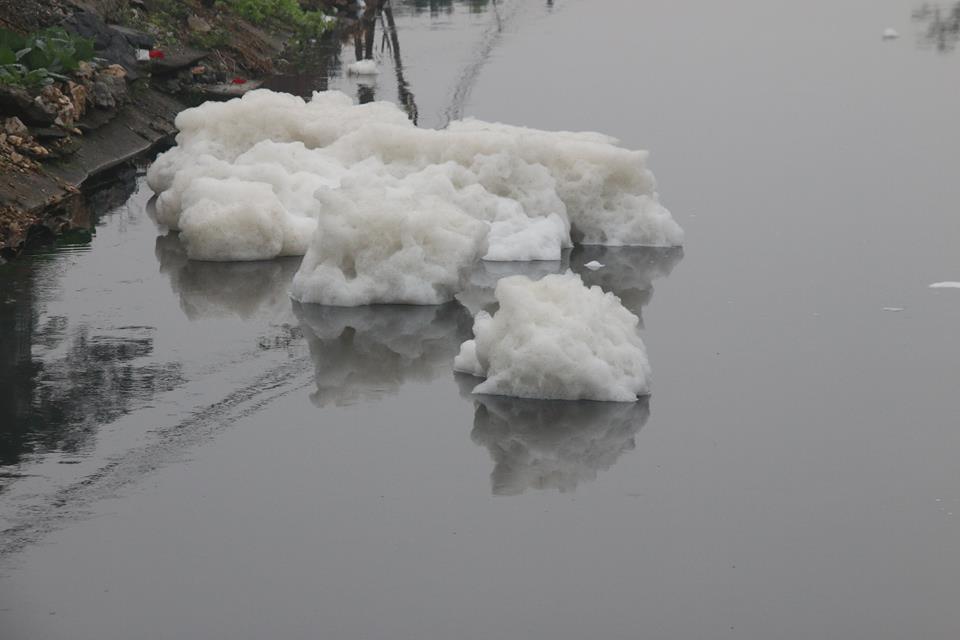 ô nhiễm,ô nhiễm môi trường