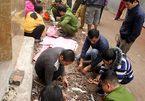 Vụ nổ ở Bắc Ninh: Công binh không được bán vật liệu nổ ra ngoài