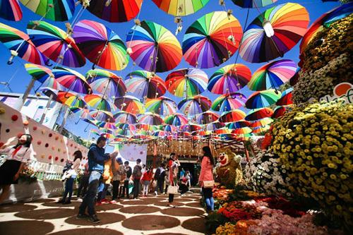 hồ Gươm,vườn hoa,giao thừa,Festival hoa,Đà Lạt