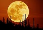Việt Nam đón siêu trăng đặc biệt sau 150 năm