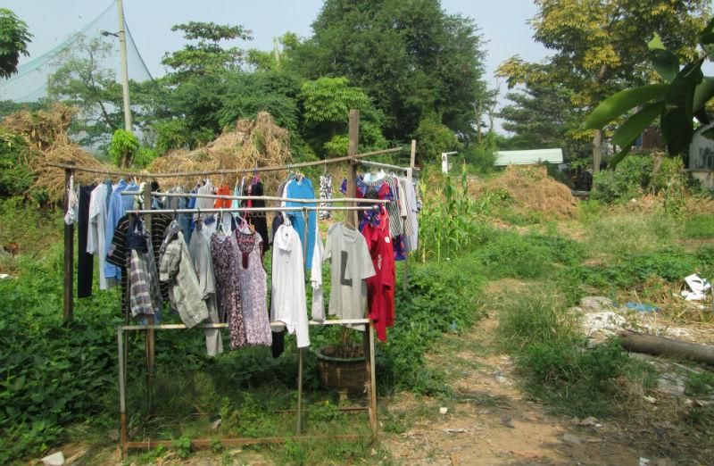 Người dân tận dụng bãi đất để phơi quần áo, trồng rau