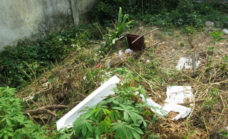Nhiều rác thải tại khu di tích 300 năm