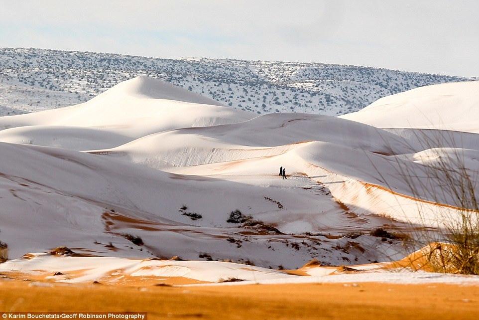 Hiện tượng kỳ lạ: Tuyết phủ trắng sa mạc Sahara