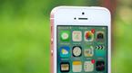 iPhone SE 2 dùng kính ở mặt lưng, hỗ trợ sạc không dây