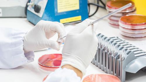 19 ca tử vong mỗi phút do đề kháng kháng sinh