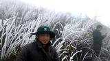 Sa Pa: Cây cỏ đông cứng trong băng giá