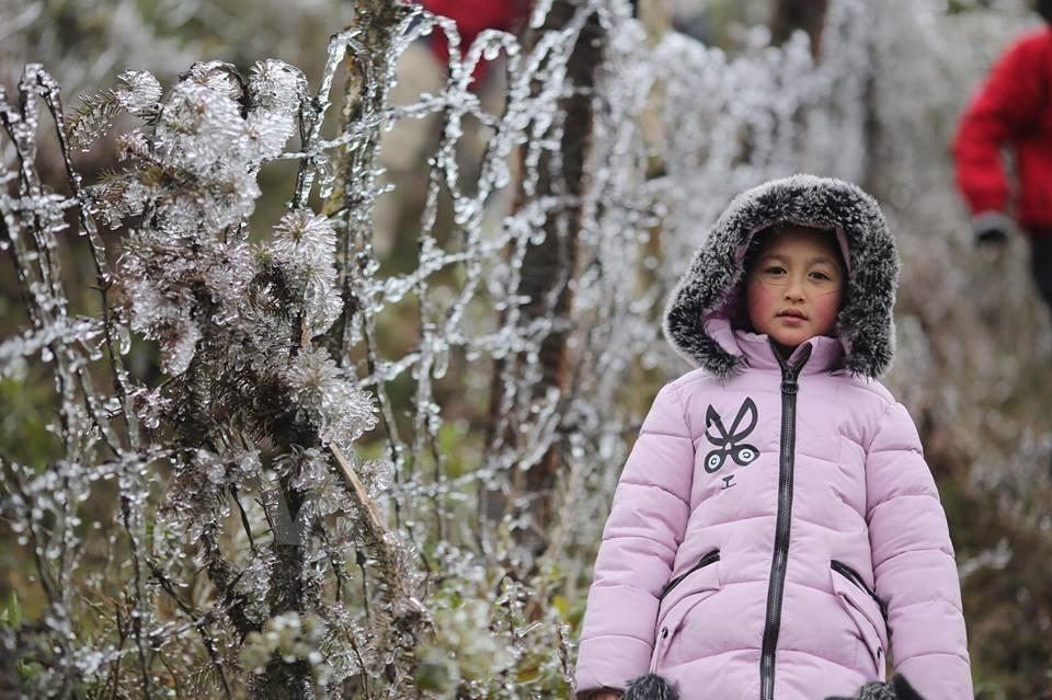 băng giá,băng tuyết,Sapa,Lào Cai,không khí lạnh