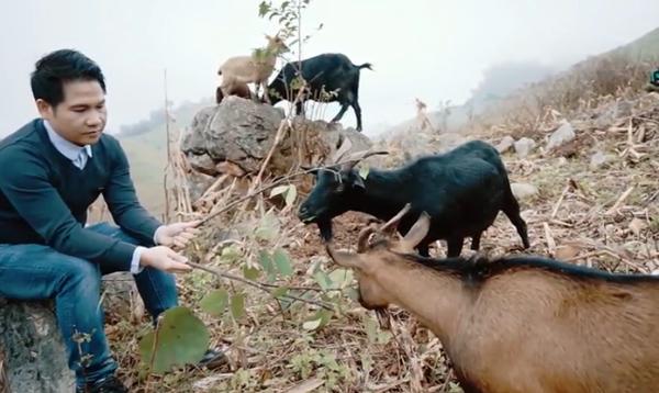 Trọng Tấn kể chuyện lên núi tìm giống dê ré thuần Việt