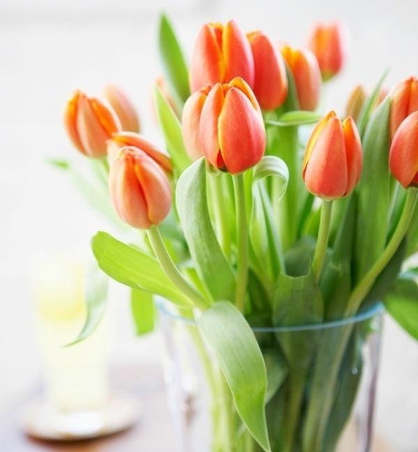 Làm ấm nhà mùa Đông nhờ sử dụng sắc cam trong trang trí nội thất - ảnh 1