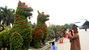 Cặp 'song khuyển uyên ương' vượt nghìn cây số khoe dáng giữa Thủ đô