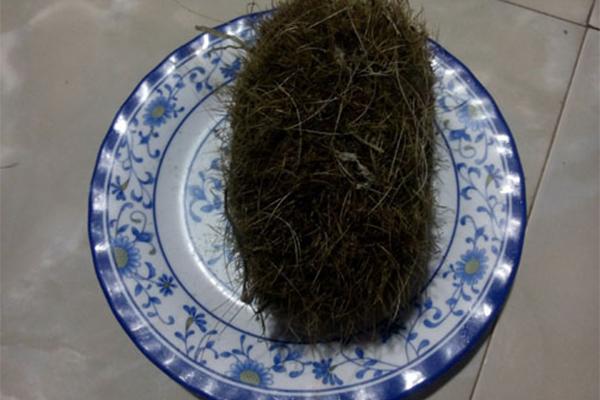 cát lợn ở Quảng Ngãi,Cát Lợn,Quảng Ngãi