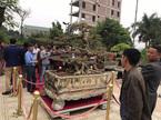 Xôn xao thương vụ mua bán 'siêu cây' 8 tỷ, độc nhất Việt Nam