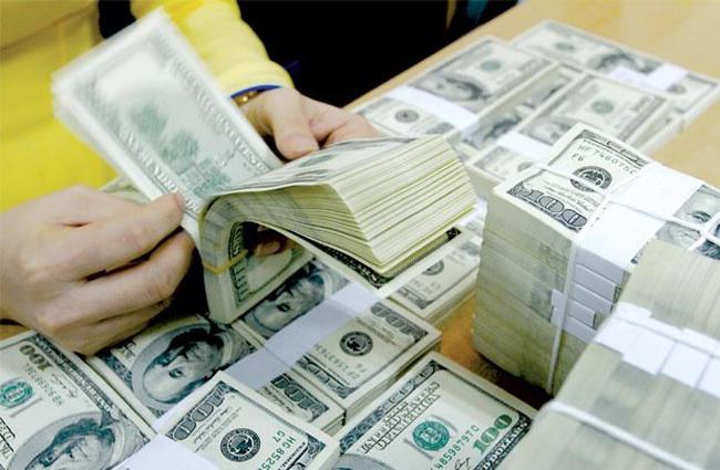 Dự trữ ngoại hối,Ngân hàng Nhà nước,NHNN,tỷ giá ngoại tệ