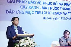 Chủ tịch HN: Nhiều người đổ nước sôi, dầu xuống cây xanh trước nhà