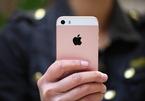 """Vụ khởi kiện Apple: Tập hợp người dùng trong vụ """"Battery Down"""""""