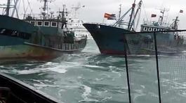 Hàn Quốc bắt giữ loạt tàu cá Trung Quốc